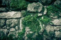 Beschaffenheit des Natursteins und des Mooses Lizenzfreie Stockfotografie