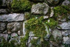 Beschaffenheit des Natursteins und des Mooses Stockfotos