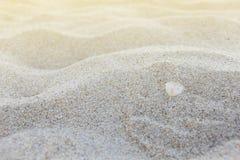 Beschaffenheit des Sandes Lizenzfreies Stockbild