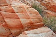 Beschaffenheit des Sandsteins stockfotos