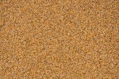 Beschaffenheit des Sandstrandes Lizenzfreie Stockbilder