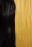 Beschaffenheit des schwarzen und goldenen blonden Haares Stockfotos