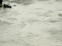 Beschaffenheit des Seestrandes mit Felsen lizenzfreies stockfoto