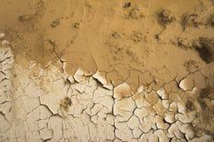 Beschaffenheit des trockenen Bodens Stockbild