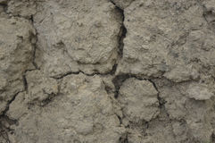 Beschaffenheit des trockenen Lehms mit Sprüngen Stockfotografie