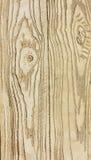 Beschaffenheit des wirklichen Holzes Lizenzfreie Stockbilder