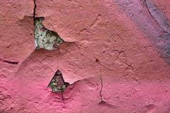 Beschaffenheit einer rosa Farbe Lizenzfreies Stockbild