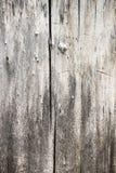 Beschaffenheit eines alten Baums Lizenzfreie Stockfotografie