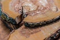 Beschaffenheit eines Baums, ein Baumstumpf mit Sprüngen in einem braunen Ton für einen Hintergrund lizenzfreie stockfotografie