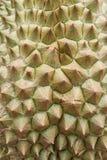 Beschaffenheit frischer Durian Lizenzfreie Stockfotografie