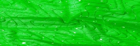 Beschaffenheit, Hintergrund, Mustermädchenkleid seide Grün-Silber mit Lizenzfreies Stockbild