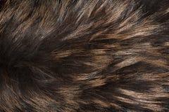 Beschaffenheit, Hintergrund von einem Pelzprodukt von einem Silberfuchs lizenzfreie stockbilder