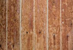 Beschaffenheit-Holz Lizenzfreie Stockfotos