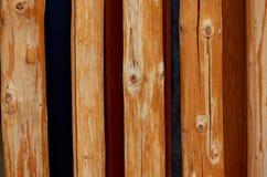 Beschaffenheit, Kieferniederlassungen, vereinbarte in einer einzelnen Reihe Kreative Lösung für einen Zaun, Außenwand, Design Stockbild