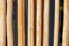 Beschaffenheit, Kieferniederlassungen, vereinbarte in einer einzelnen Reihe Kreative Lösung für einen Zaun, Außenwand, Design Lizenzfreie Stockbilder