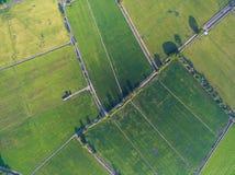 Beschaffenheit und Muster von grünen Reisbauernhöfen von oben Lizenzfreie Stockbilder