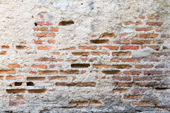 Beschaffenheit von alten Gipswänden, Gipsschale, bis Sie sehen Stockbild