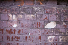 Beschaffenheit von alten Wandfliesen und von Resten des Papiers Lizenzfreies Stockfoto