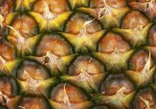 Beschaffenheit von Ananas stockfotografie