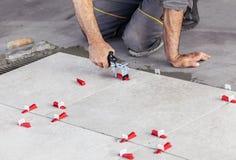 Beschaffenheit von ceranic Dachdecker, der vorbei keramische Wandfliese in Position legt Lizenzfreie Stockfotografie