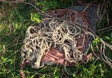 Beschaffenheit von den Jutefaserseilen benutzt im shibari, Technik der japanischen Knechtschaft Viele Stränge und losen Seile für lizenzfreie stockbilder