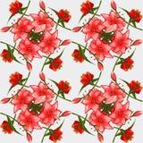 Beschaffenheit von den Knospen von rosa Lilien, elegante Postkarte Lizenzfreie Stockbilder