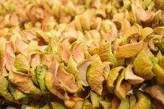Beschaffenheit von getrockneten Äpfeln in den Reihen stockfoto