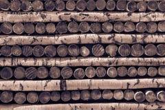 Beschaffenheit von hölzernen Klotz und von Brennholz Lizenzfreie Stockbilder