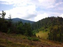 Beschaffenheit von Karpaten Lizenzfreie Stockfotos
