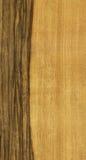 Beschaffenheit von limba Baum Stockfoto