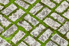 Beschaffenheit von Pale Decorative Stone Work mit grünem Moos Lizenzfreies Stockbild