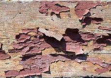 Beschaffenheit von Schalenfarbe 2 Stockbild