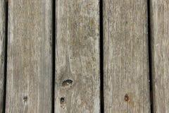 Beschaffenheit von schimmeligen Holzverkleidungen Stockfoto