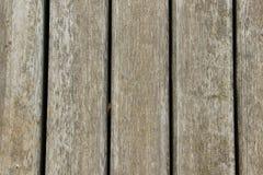 Beschaffenheit von schimmeligen Holzverkleidungen Stockbilder