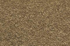 Beschaffenheit zerriss getrocknete Blätter der grauen gelben Farbe Lizenzfreies Stockfoto