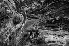 Beschaffenheiten und Muster auf Holz Lizenzfreie Stockbilder