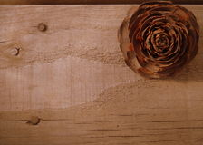Beschaffenheits-nahes hohes hölzernes Brett mit Cedar Rose Lizenzfreie Stockbilder