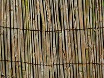 Beschaffenheitsalter Bambusreedzaun Stockbild