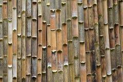 Beschaffenheitshintergrund alte Bambuswand oder des Bambuszauns Stockfotos