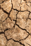 Beschaffenheitshintergrund des trockenen Bodens Stockbilder