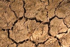 Beschaffenheitshintergrund des trockenen Bodens Lizenzfreies Stockfoto