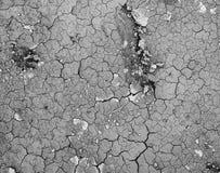 Beschaffenheitshintergrund des trockenen Bodens Stockbild