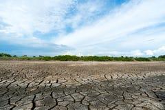 Beschaffenheitshintergrund des trockenen Bodens Stockfotos