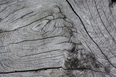 Beschaffenheitsoberfläche des alten Holzes Lizenzfreies Stockfoto