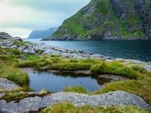 Bescheidene Vegetation in den Bergen von Norwegen, Gruppen von Steinen stockfotos