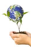 Bescherm het milieu Royalty-vrije Stock Afbeeldingen