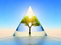 Beschermde boom vector illustratie