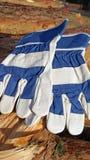 Beschermende handschoenen Stock Foto's
