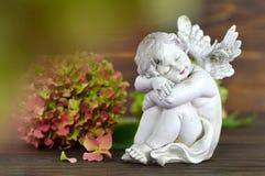 Beschermengel en bloem Stock Foto