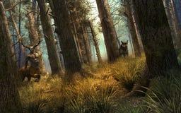 Beschermers van het bos Stock Afbeeldingen